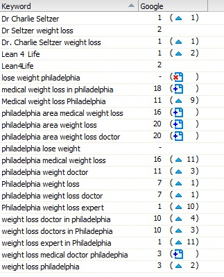 Top Mobile and Local Search Rank for Weight Loss Doctor